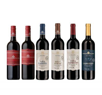 Großes Weinpaket Bodegas Palmera